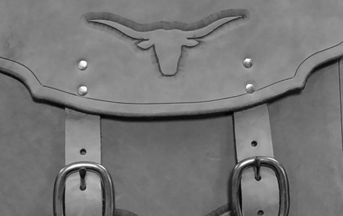Longhorn saddlebags