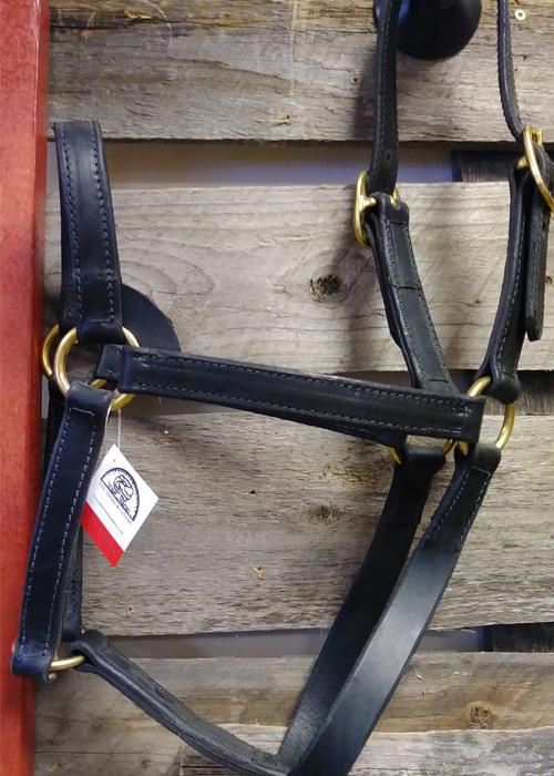 large horse bridle halter