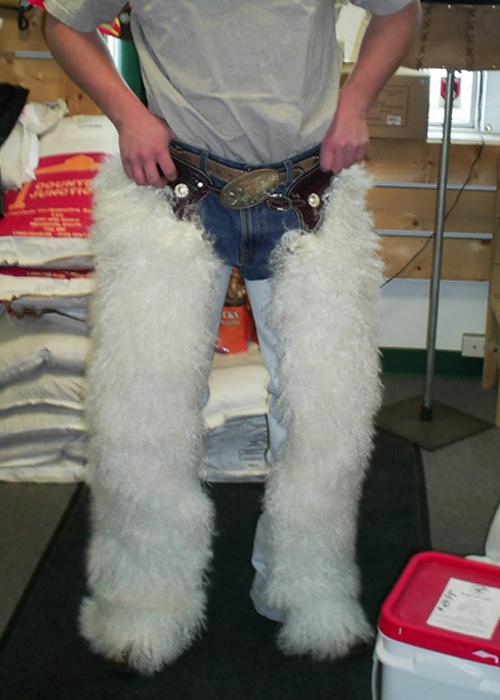 JBS custom chaps-woolies